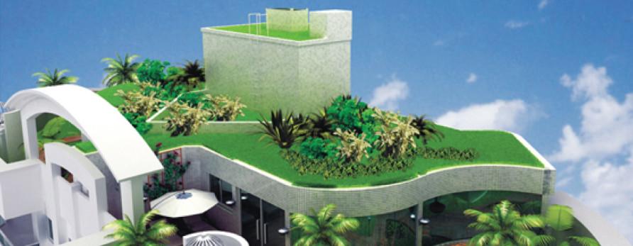 Arquitetura e decoração sustentáveis: exemplos e dicas