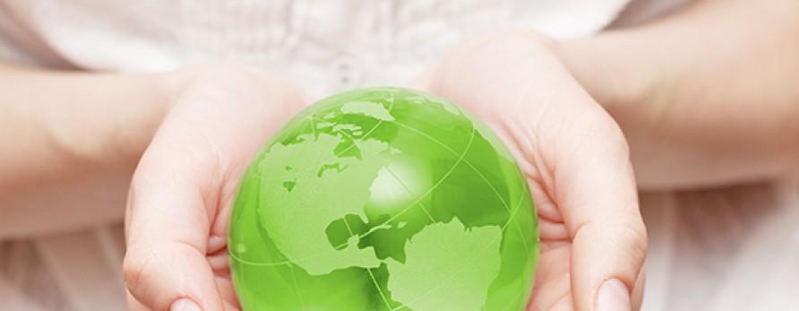 Empresas sustentáveis: veja exemplos e adote-os na sua.