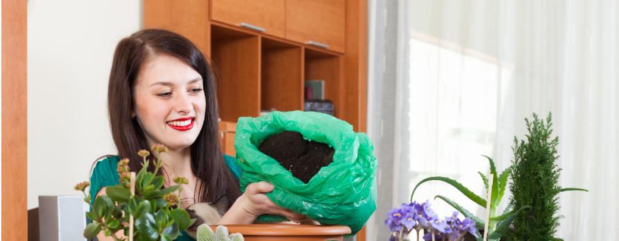 Jardinagem e sustentabilidade: hortas em casa